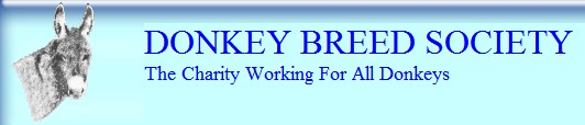 Donkey Breed Society (UK)